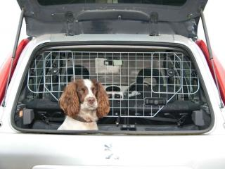 dog car boot guard