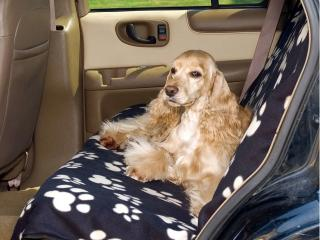 rear car seat cover for dogs